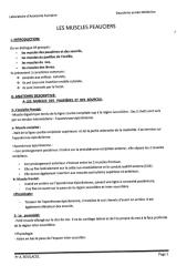 anato2an-muscles_peauciers.pdf