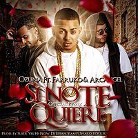 Si No Te Quiere (Remix) .mp3