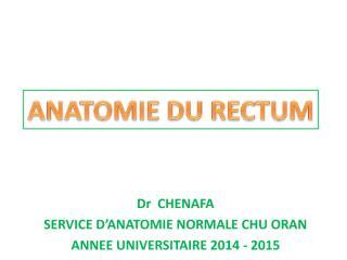 anato2an31-rectum.pdf