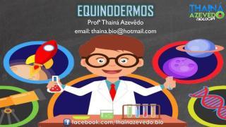7.18 - Equinodermos.pdf