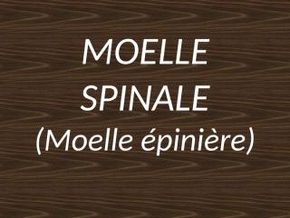 anatomie2an-moelle_spinale.ppt