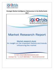 Strategic Market Intelligence Reinsurance in the Netherlands-2017.pdf