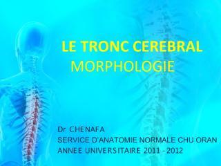 anato2an31-tronc_cerebral2.pdf