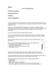 bio-smt2-plantae1.doc